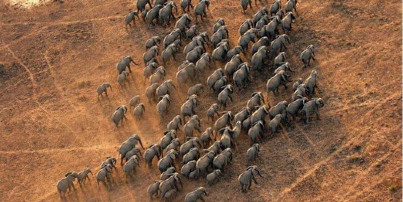 Lantoto National Park