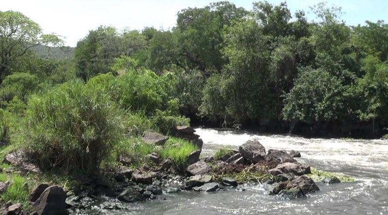 Nimule National Park